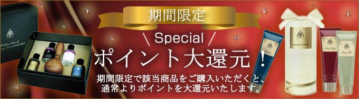【期間限定】ポイント大還元セール